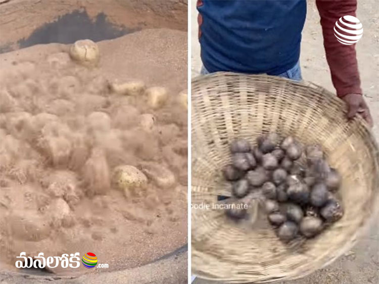 man cooks potatoes in sand viral video