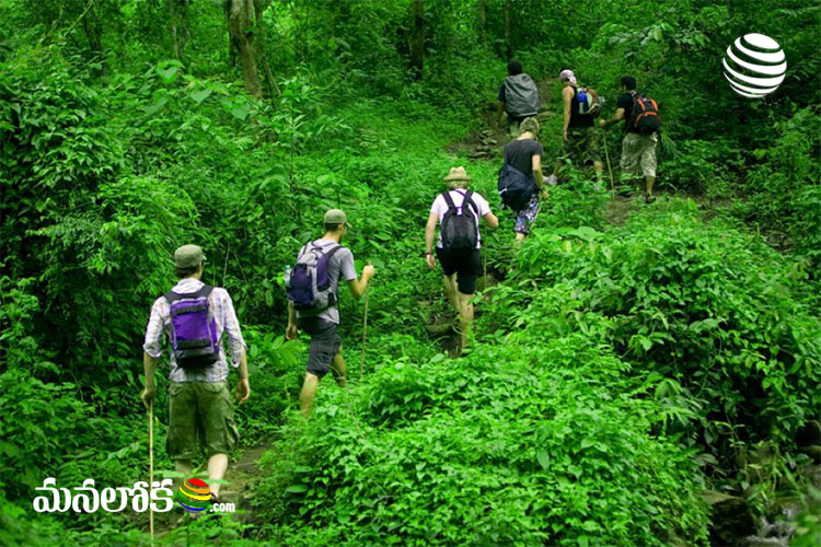 want to go for trekking visit these 5 places in india