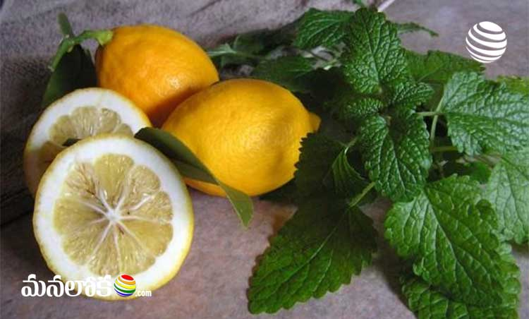 putting lemon drops in nose prevents covid is it true